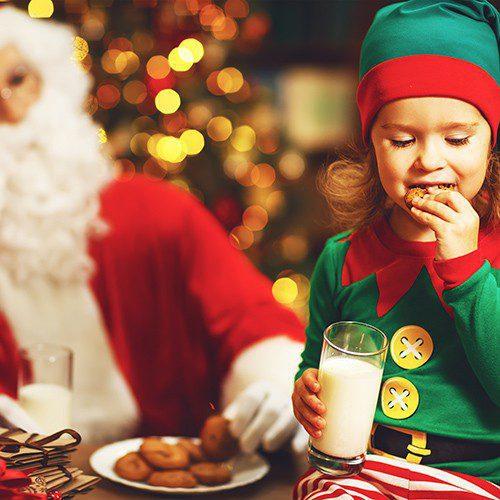 Raglan Garden Centre Breakfast with Santa